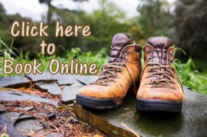 Book Online, North Carolina Guided Hiking Tours