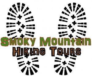 North Carolina Guided Hiking Tours, North Carolina, Smoky Mountain Hiking Tours, Hiking Guides, Gatlinburg Hiking Guides, Gatlinburg Hiking Tours, Bryson City Hiking Tours, Bryson City Hiking Guides, Great Smoky Mountains National Park, Great Smoky Mountains National Park Hiking,