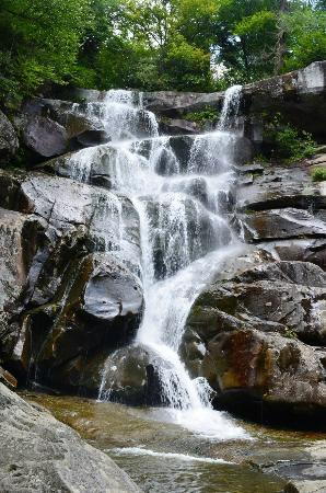Ramsey Cascades. Smoky Mountain Hiking Tours, Guided hiking, Hiking Guides, Gatlinburg, Pigeon Forge, Sevierville, Tennessee,